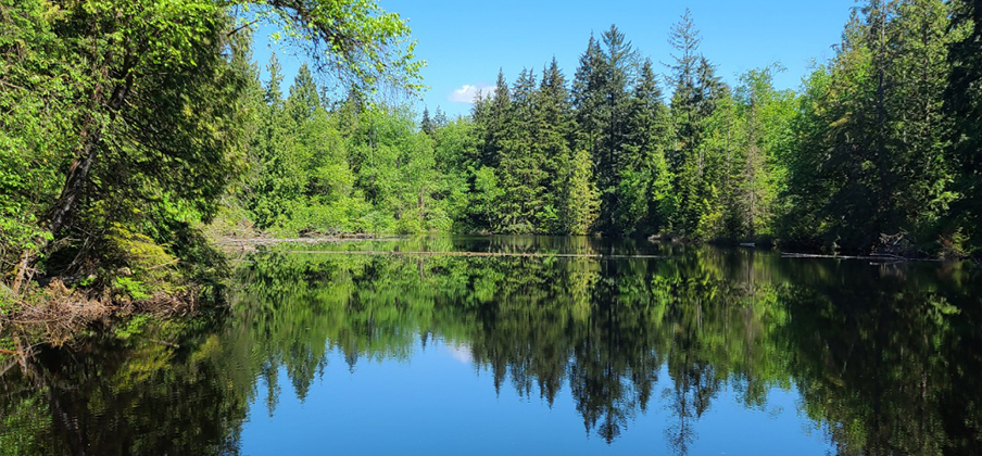 로스트 레이크 (Lost Lake – Mundy Park)